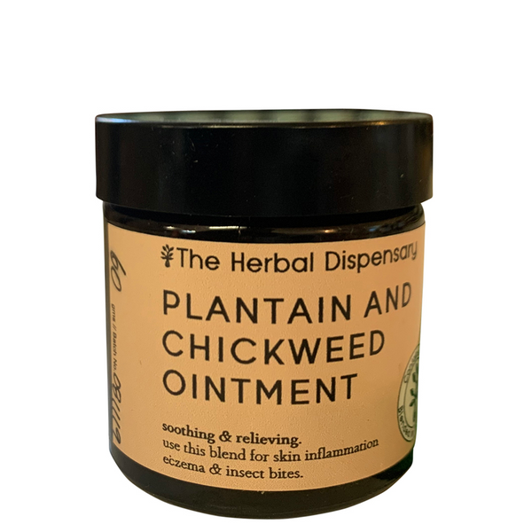 HERBAL DISPENSARY PLANTAIN & CHICKWEED OINTMENT
