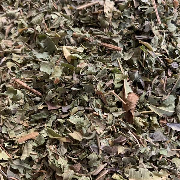 ORGANIC LEMON VERBENA HERBAL TEA