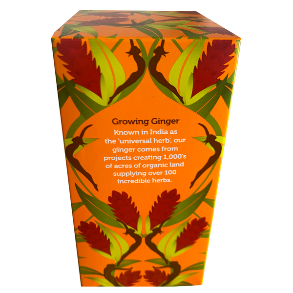 PUKKA ORGANIC THREE GINGER TEA BOX