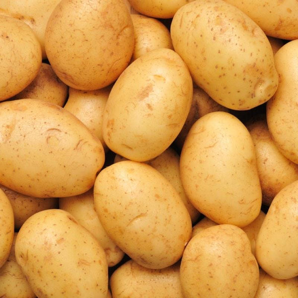 POTATOES AGRIA SPRAY FREE (PER 1KG)