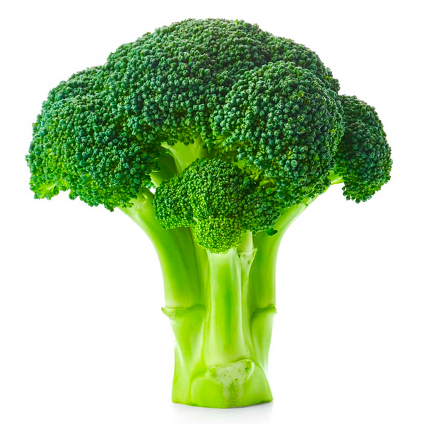 BROCCOLI HEAD ORGANIC