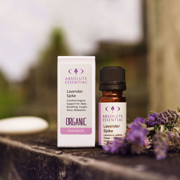 ABSOLUTE ESSENTIALS ORGANIC LAVENDER SPIKE 10ML
