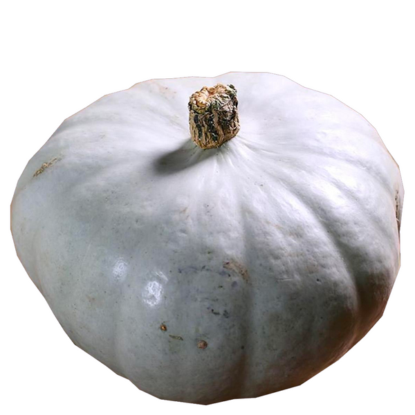 PUMPKIN CROWN ORGANIC 1 KG