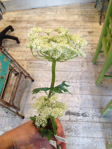 Cow Parsley - Susan Clark Interiors