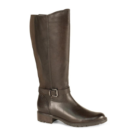 Blondo Valente (Women) - Java Boots|Fashion - High Boot - The Heel Shoe Fitters