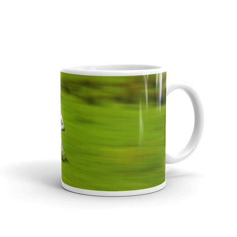 Spring Lamb in the Lake District National Park (Cumbria) Mug