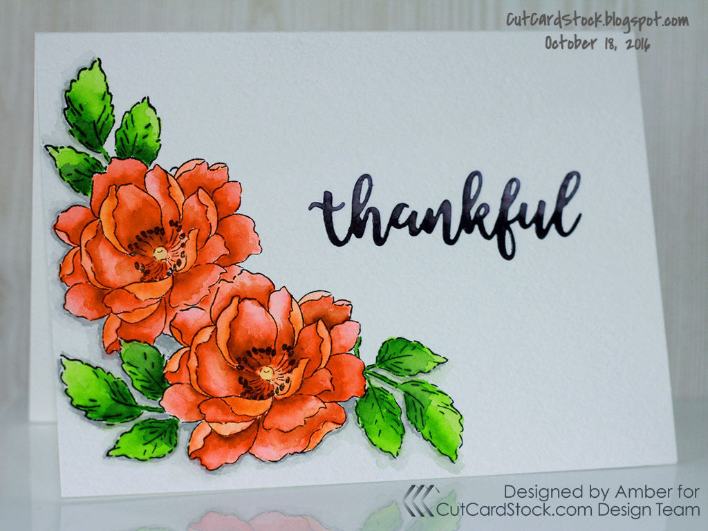 Strathmore watercolor cards and envelopes full size cards 10 pack click image to enlarge kristyandbryce Choice Image