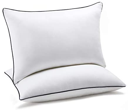 Luxury Pillows (Sets of 2) - Aiko 360
