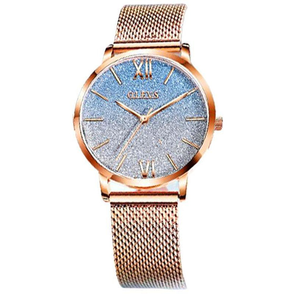 Stainless Mesh Watches Jewelry at Jewels Genie