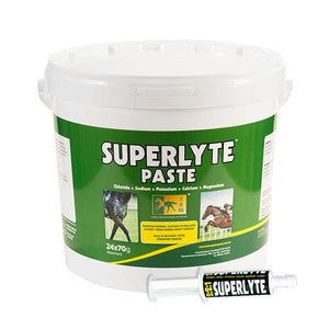 Superlyte Electrolyte Paste