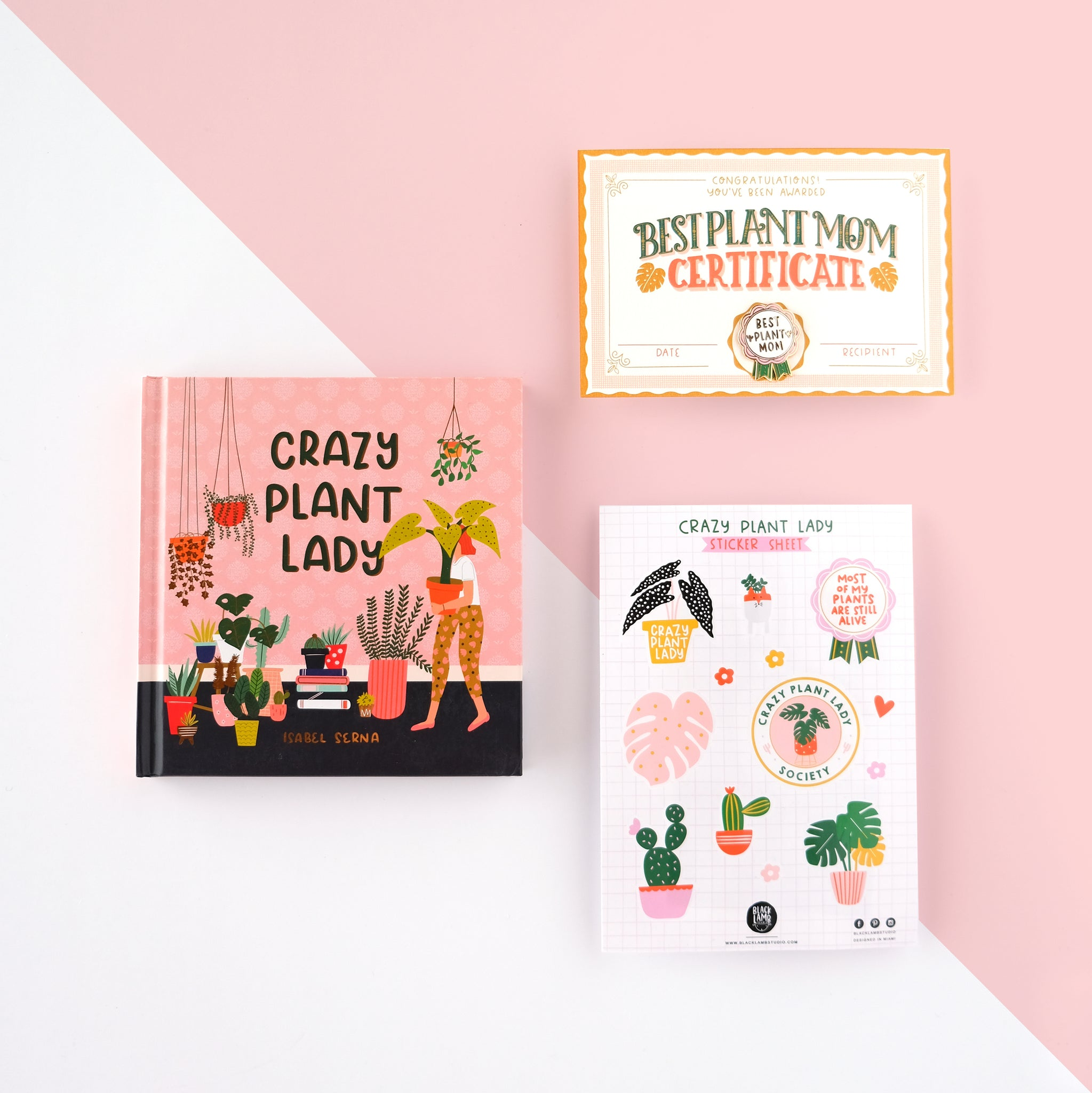 CRAZY PLANT LADY GIFT BOX 2