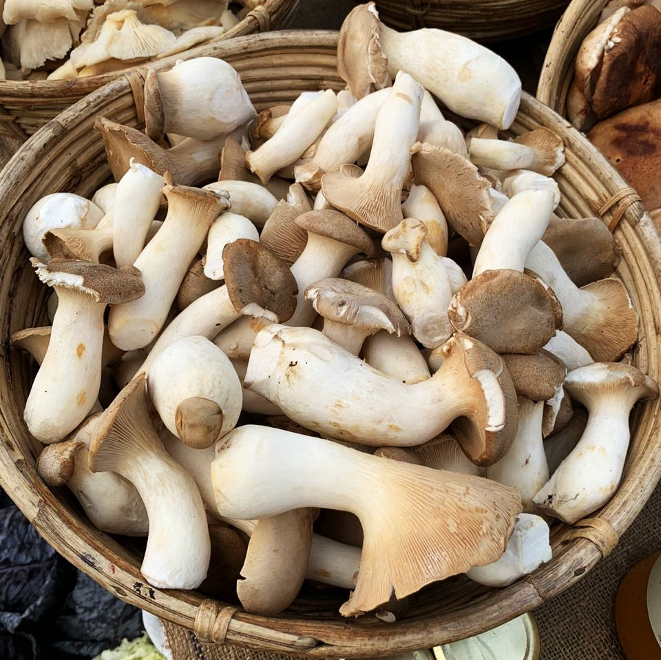 King Oyster Mushrooms 200g