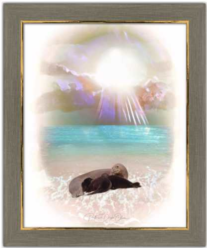 HAWAIIAN MONK SEAL TWINS - Framed Fine Art Paper Prints