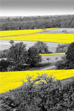 Carica l'immagine nel visualizzatore di Gallery, Photograph European Landscape Picture Home Decor Nordic Canvas Painting Wall Art Yellow Style Scenery Poster for Living Room
