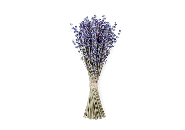 Lavender Dried (Bunch)