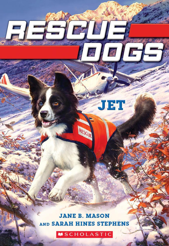 Rescue Dogs #3: Jet