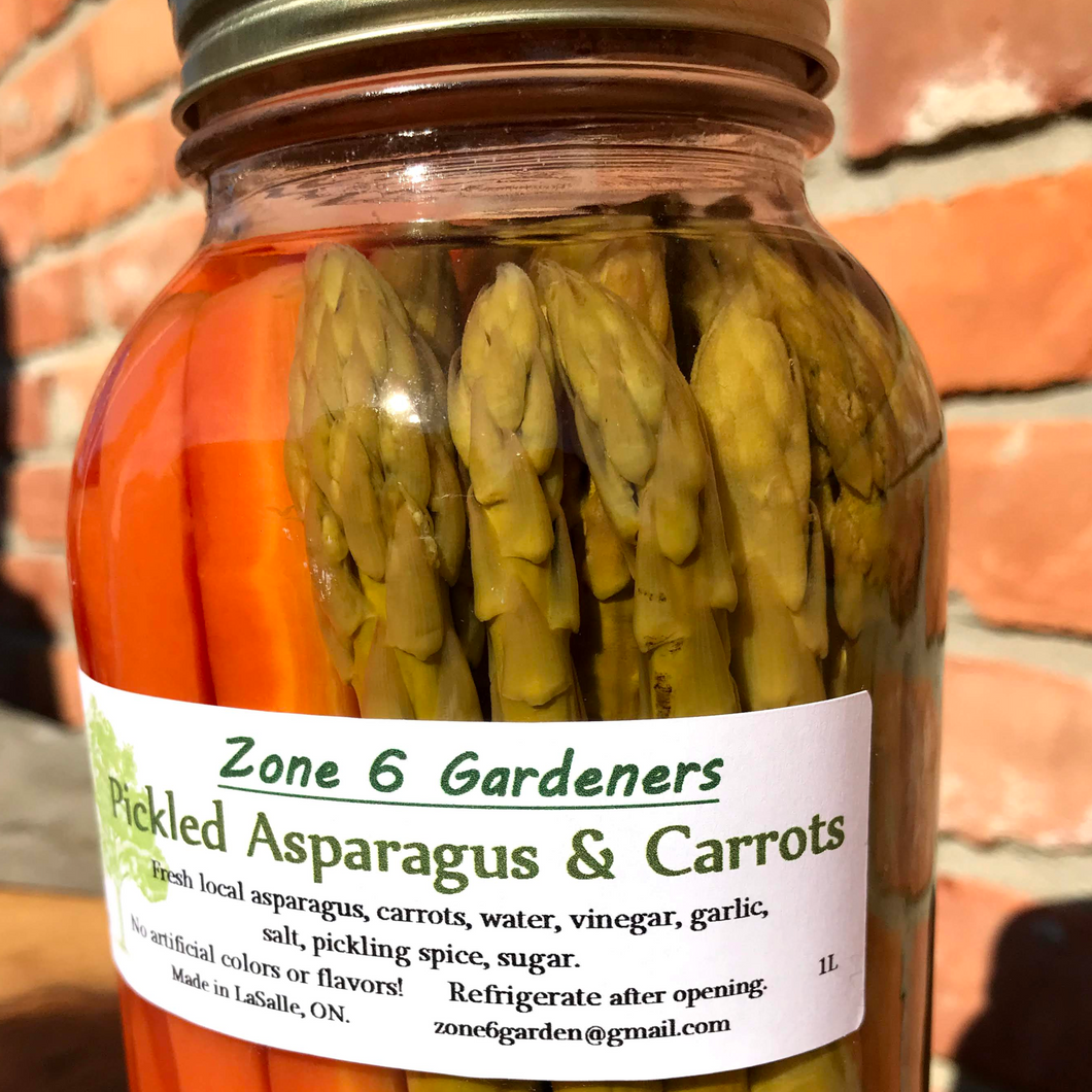 Pickled Asparagus and Carrots