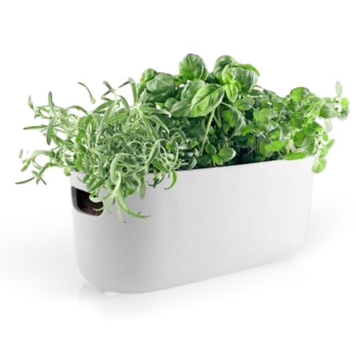Eva Solo Self Watering Herb Organiser White