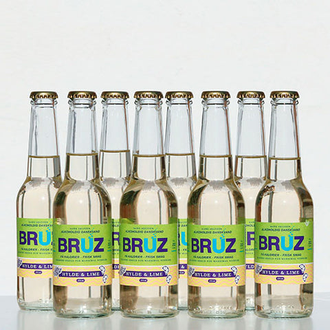 BRUZ Hard Seltzer The Party Pack