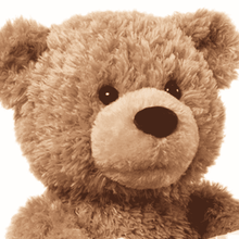 Load image into Gallery viewer, Peek-A-Boo Teddy