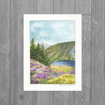 The Heather in Wicklow