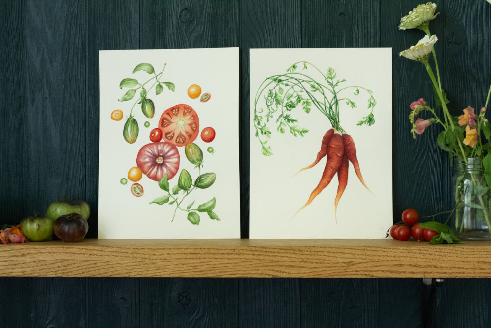 Heirloom Carrot and Summer Splendor tomatoes paintings by Courtney Hopkins