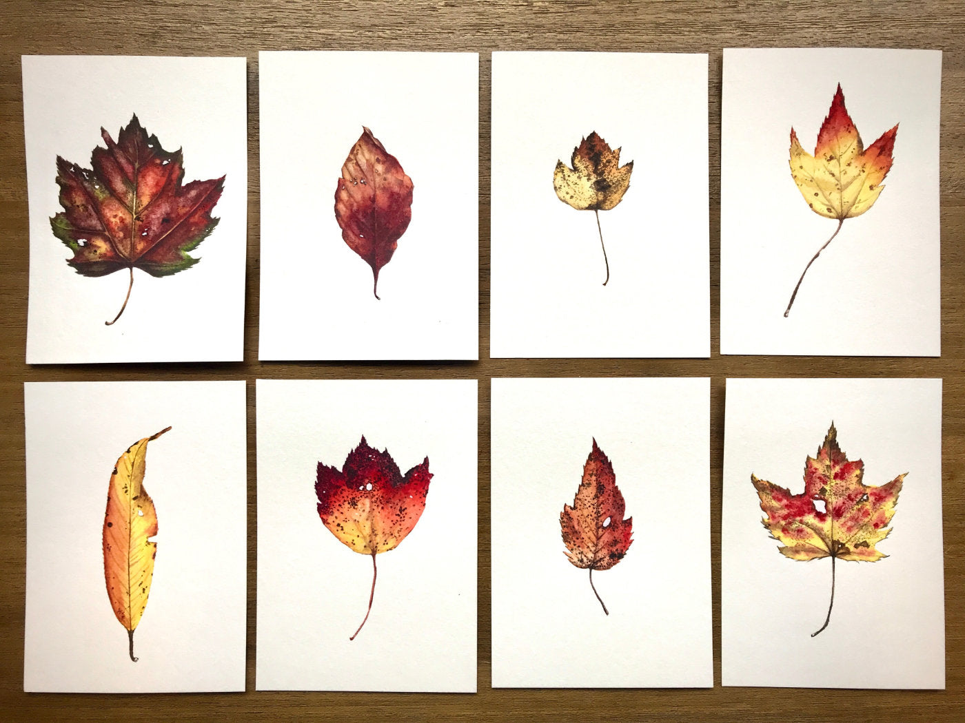 Autumn Leaves by Courtney Hopkins