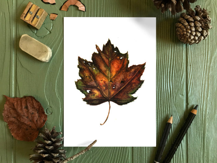 Autumn Leaf Study V Original