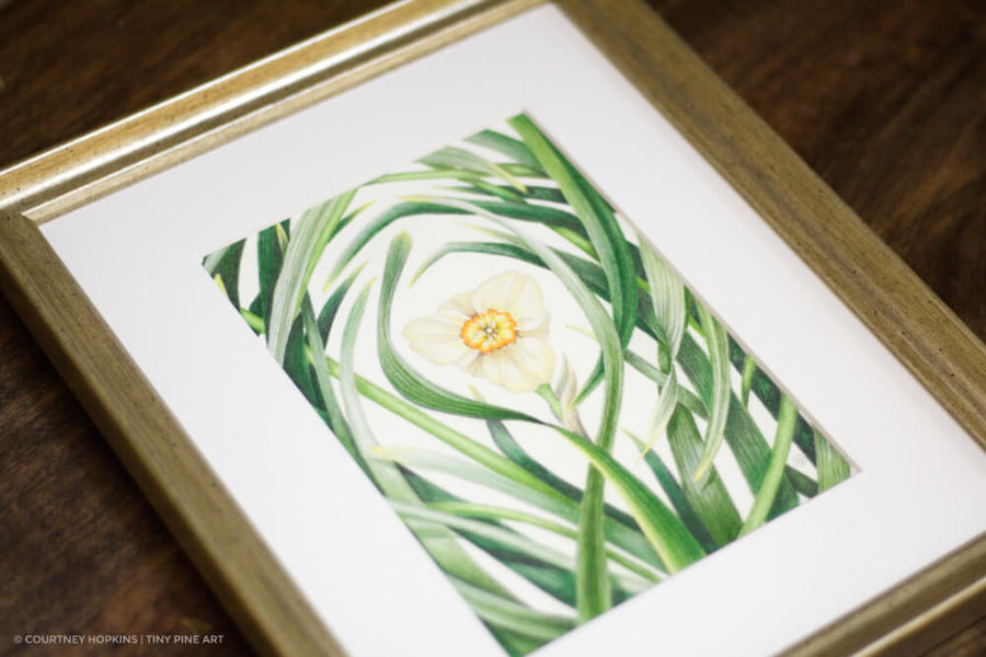 Through the Daffodil Leaves - Framed Original Drawing
