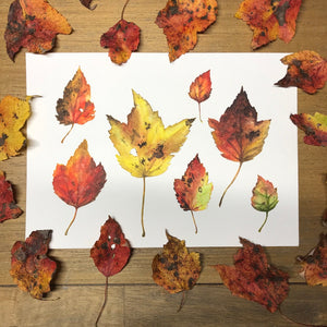 Fall leaves painting on table with collected actual fall leaves