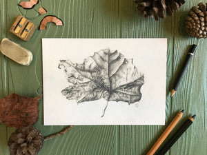 Fallen Sycamore art print on table with art supplies
