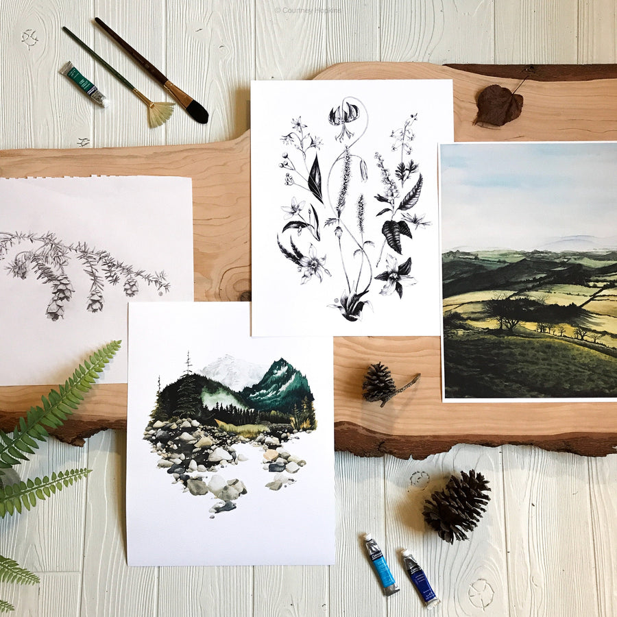 Hemlock Branch & Pinecones Print in gallery with similar artworks