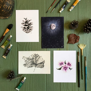 Woodland Pinecone Print in gallery with similar artworks