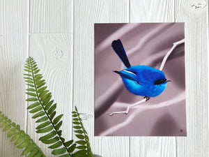 Blue Fairy Wren art print on wall