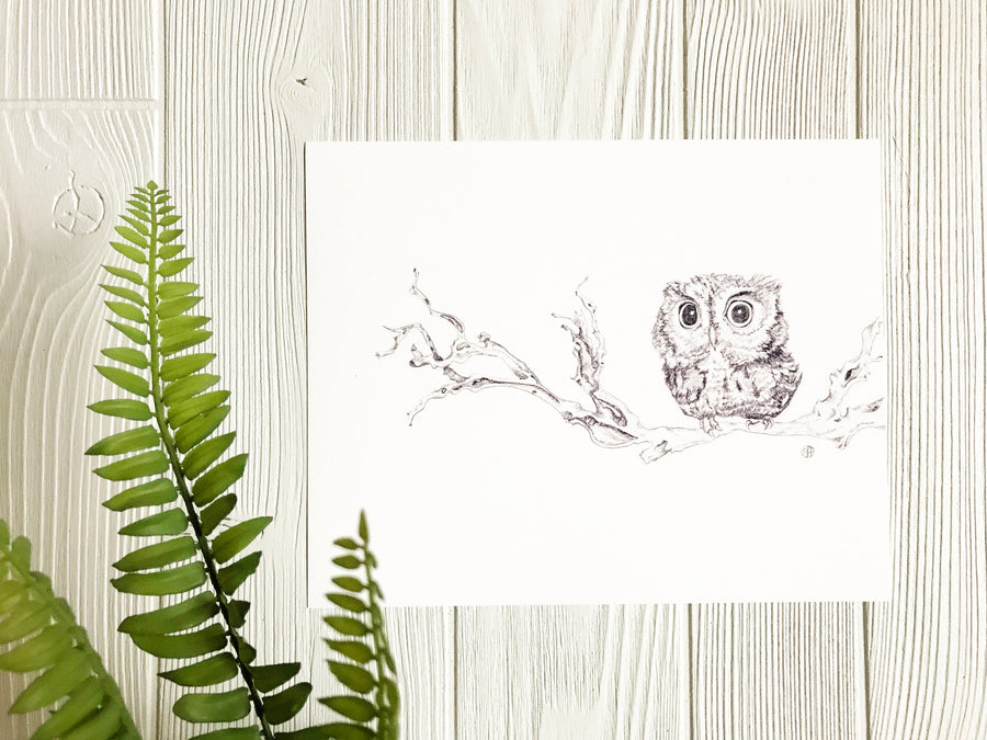 Little Owl On Branch Print on wall with greenery