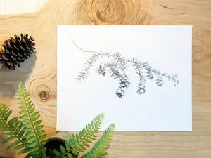 Hemlock Branch & Pinecones Print on wood background