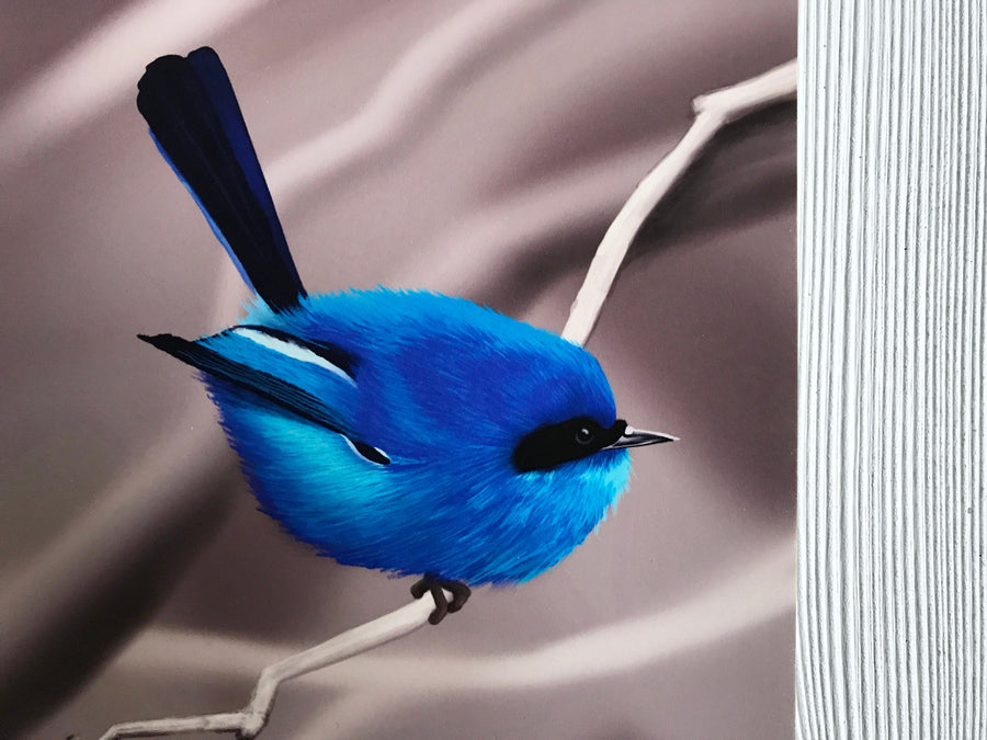 Blue Fairy Wren art print closeup