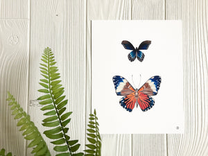 Blue and Orange Butterflies art print displayed on wall