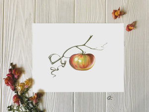 Ripening tomato art print on white background with flowers