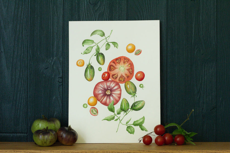 Summer Splendor tomatoes art print on green background