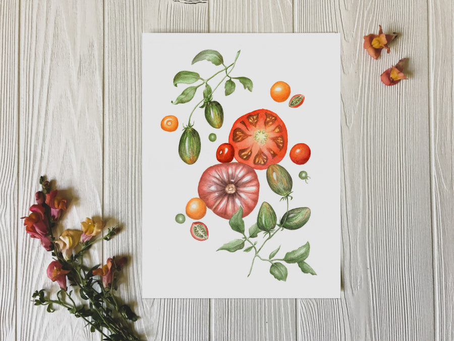 Summer Splendor tomatoes art print on white background