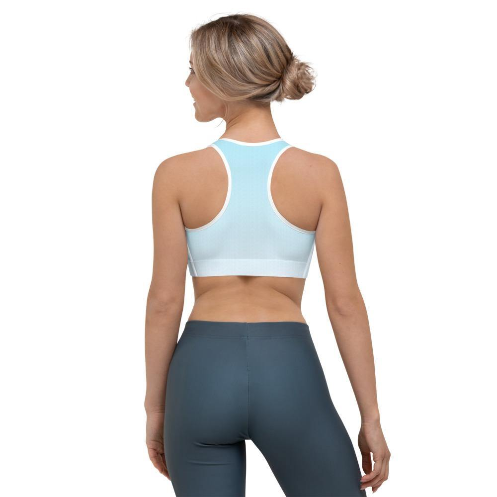 Arctic Ice Ombre Sports Bra - HAVAH