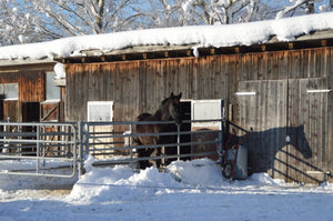 Handling Ice And Snow At The Barn