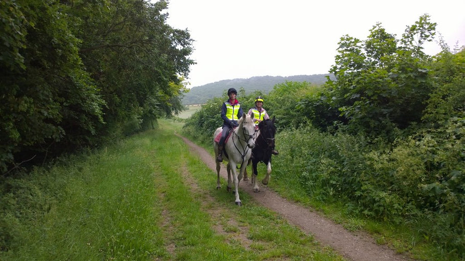 Why It's Never Too Late to Take Up Horse Riding
