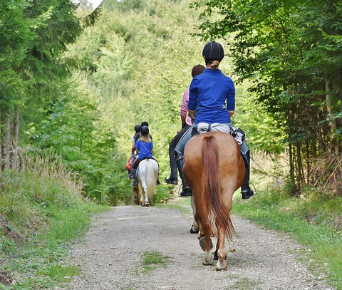 Planning the Perfect Extended Horse Riding Trail Ride