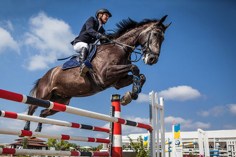This Week's Team GB Equestrian Olympics 2020 Wrap Up