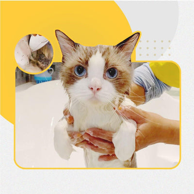 De-Flea Treatment - Catzonia