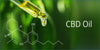 A Beginners Guide on How Hemp Oil and CBD can be used as Supplements to Combat Diseases