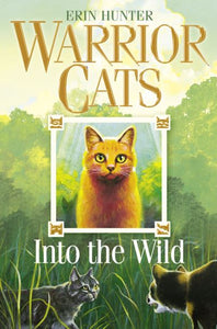 Warrior Cats Into The Wild