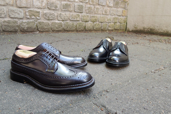 Alden's Longwing and Plain Toe Bluchers